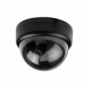 Пример купольной камеры